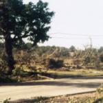 050-002-023 tornado E_1.jpg